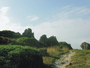 龍坑生態保護區